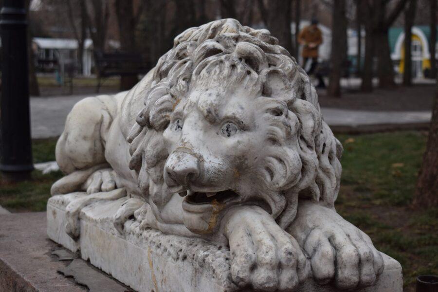 Миколаївські леви